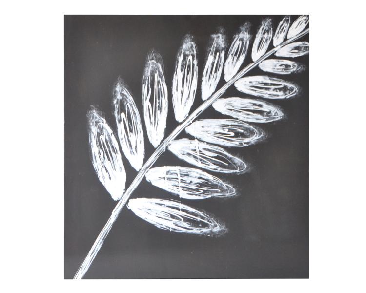 3.White Leaf